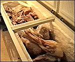 Click image for larger version  Name:dog-meat-764728.jpg Views:220 Size:12.7 KB ID:5894